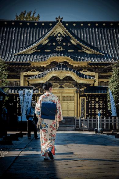Ueno Toshogu, Santuario di Tokugawa