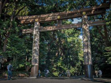 Cosa vedere a Tokyo - il Meiji Jingu