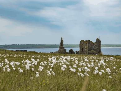 Tour di 10 giorni in Scozia - Castle Sinclair