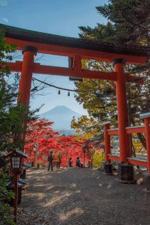 Monte Fuji e i colori dell'autunno