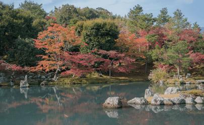 Kyoto colorata dal momijigari