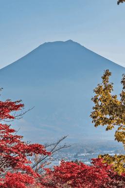 Monte Fuji e il momijigari